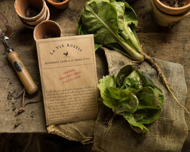 LA VIE RUSTIC FRENCH CHICORY SEED COLLECTION